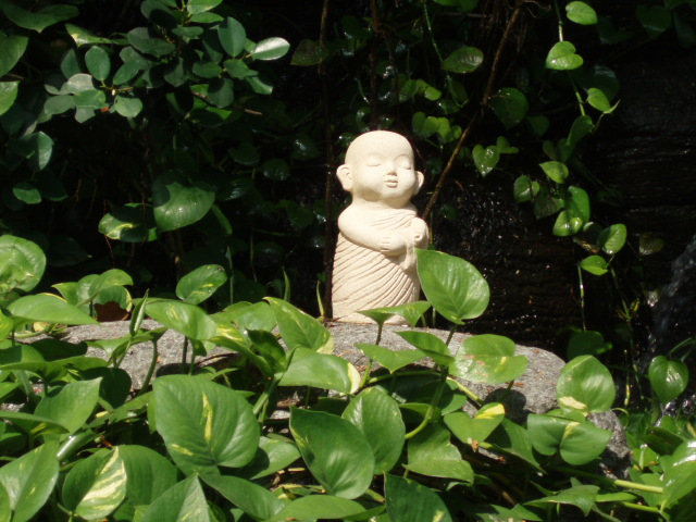 THAI__08-09_310.png
